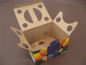 Box - Inside 1