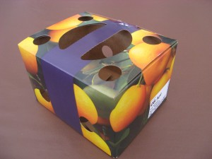 Box back