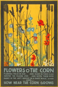 edward-mcknight-kauffer-flowers-o-the-corn-1920